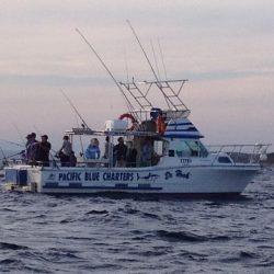 Deep Sea & Reef Fishing